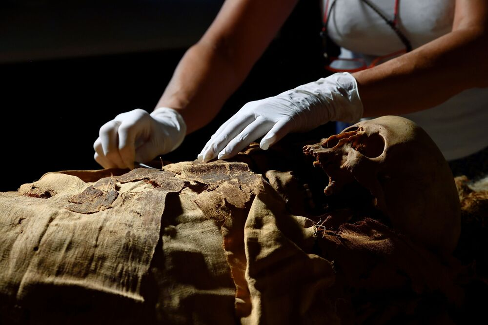 Studying ancient diseases is also a part of the research