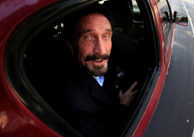 Software pioneer John McAfee is escorted by immigration officers to the Guatemalan Airport in Guatemala City December 12, 2012.