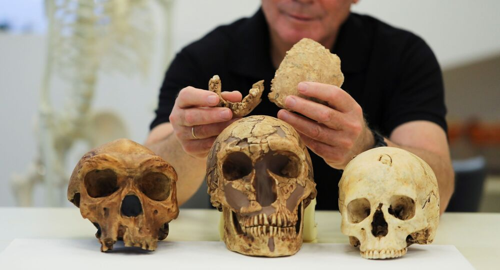 Tel Aviv University Professor Israel Hershkovitz, holds what scientists say are two pieces of fossilised bone of a previously unknown kind of early human discovered at the Nesher Ramla site in central Israel, during an interview with Reuters at The Steinhardt Museum of Natural History in Tel Aviv, Israel June 23, 2021.