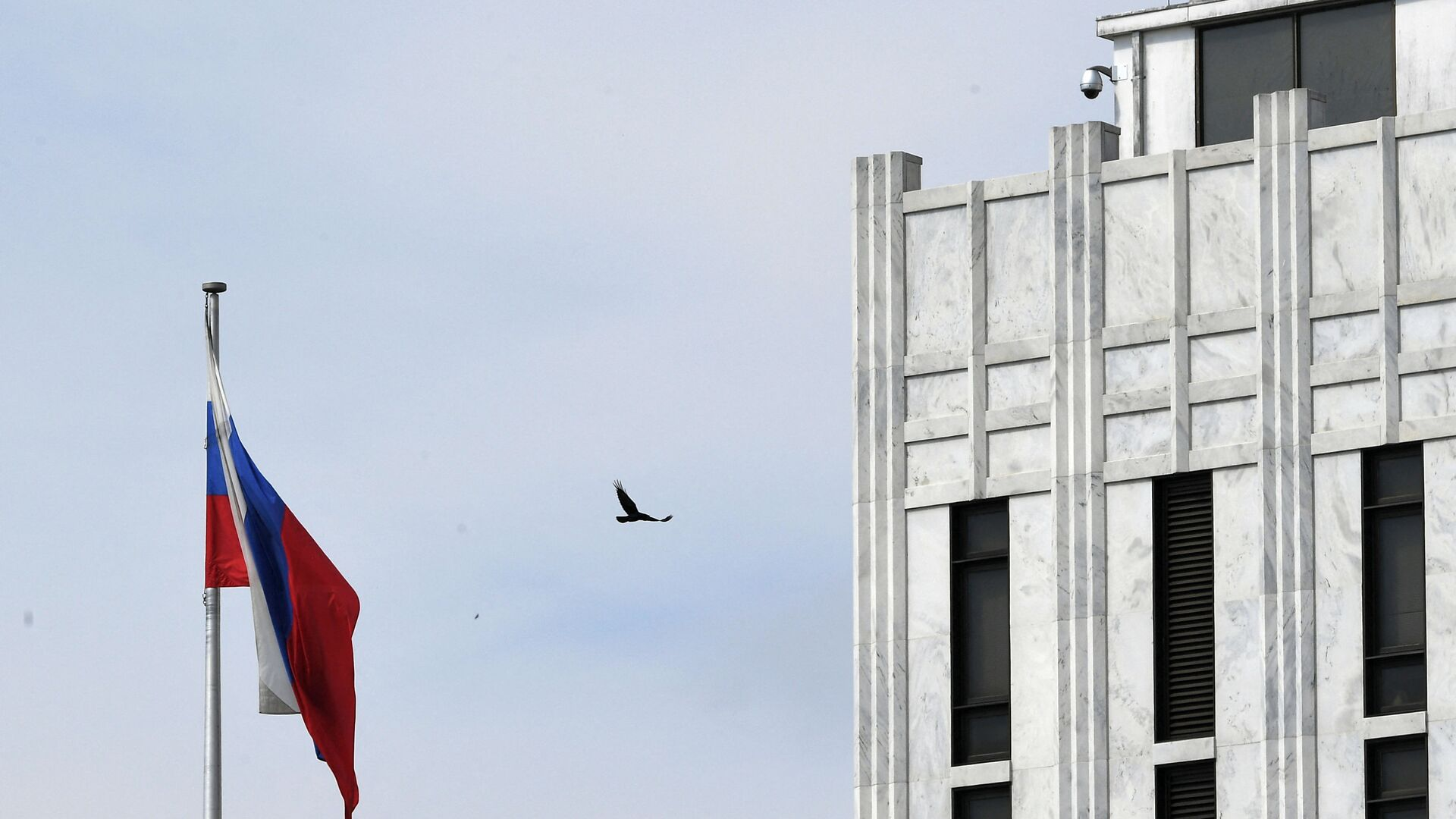 A bird flies past a Russian flag at the Embassy of Russia in Washington, DC on April 15, 2021. - Sputnik International, 1920, 03.08.2021