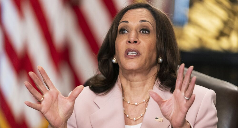 Vice President Kamala Harris speaks during a roundtable with disabilities advocates on voting rights in the Vice President's Ceremonial Office at the Eisenhower Executive Office Building on the White House complex, Wednesday, July 14, 2021, in Washington