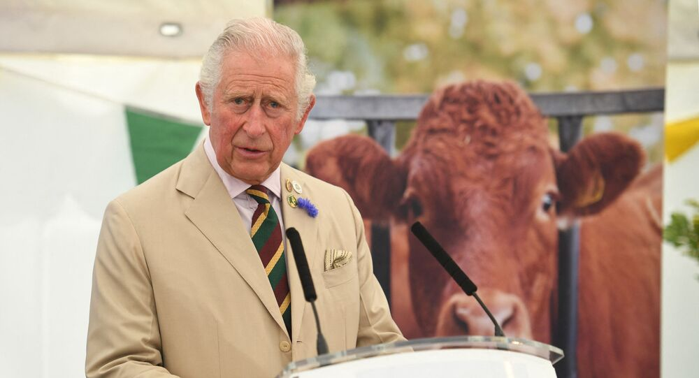 Britain's Prince Charles, Prince of Wales makes a speech during his visit to the Great Yorkshire Show in Harrogate, northern England on July 15, 2021.