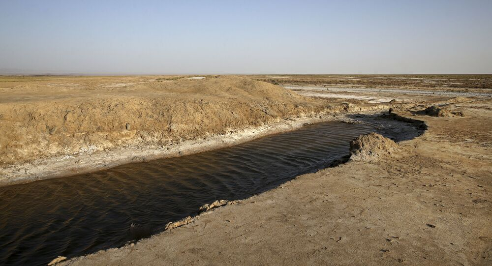 This Tuesday, 10 July 2018 photo, shows one of last puddles of salty water remaining in the the Gavkhouni wetlands, which was once a swamp fed by the Zayandeh Roud river, and is now  surrounded by desicated salt-laced fields, outside the town of Varzaneh and its suburbs, home to 30,000 people, some 550 kilometers (340 miles), south of the capital Tehran, Iran. Farmers in central Iran are increasingly turning to protests, pleading to authorities for a solution as years of drought and government mismanagement of water destroy their livelihoods. (AP Photo/Vahid Salemi)