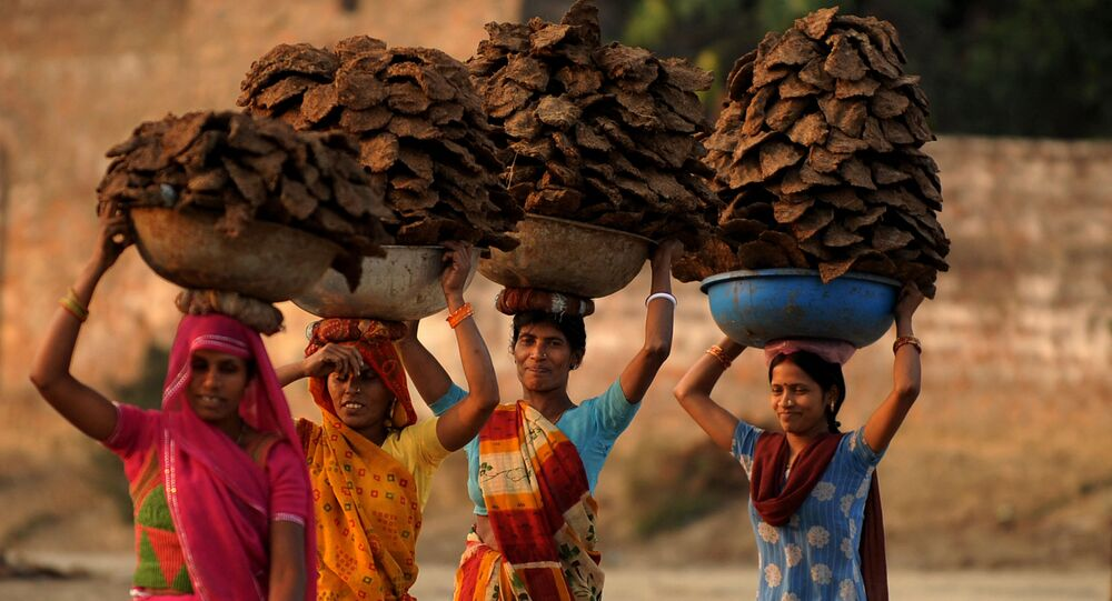Indian village women carry dried cow dung cakes in the Teliarganj area on the outskirts of Allahabad on December 21, 2009