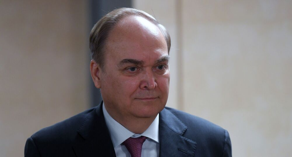Ambassador Extraordinary and Plenipotentiary of the Russian Federation to the United States of America Anatoly Antonov during a briefing at the State Duma of the Russian Federation in Moscow.
