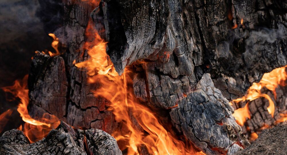 A stump burns in an area hit hard by the Bootleg Fire near Bly Oregon, U.S., July 19, 2021.
