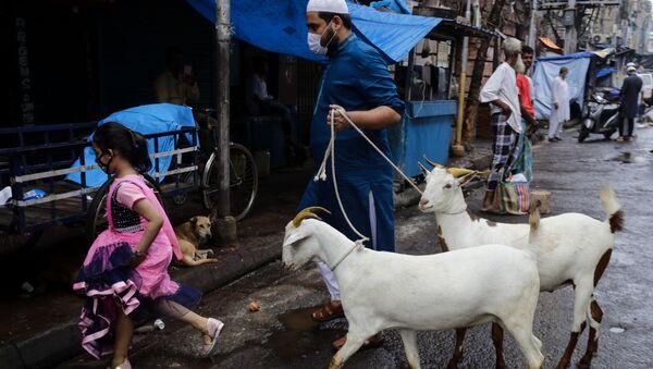 A Muslim walks with goats for sacrifice during Eid al-Adha festival in Kolkata, India, Wednesday, July 21, 2021 - Sputnik International