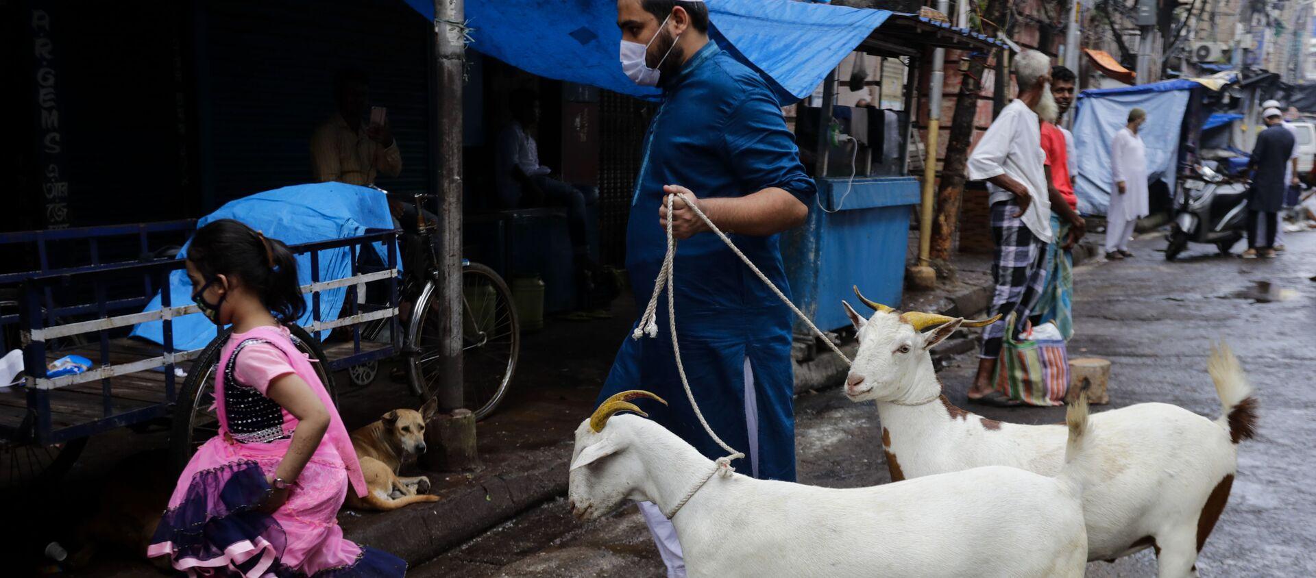 A Muslim walks with goats for sacrifice during Eid al-Adha festival in Kolkata, India, Wednesday, July 21, 2021 - Sputnik International, 1920