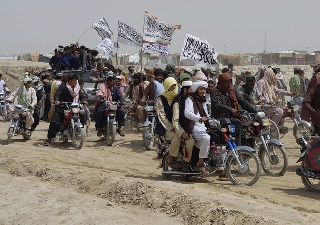 Supporters of the Taliban carry the Taliban's signature white flags in the Afghan-Pakistan border town of Chaman, Pakistan, Wednesday, July 14, 2021