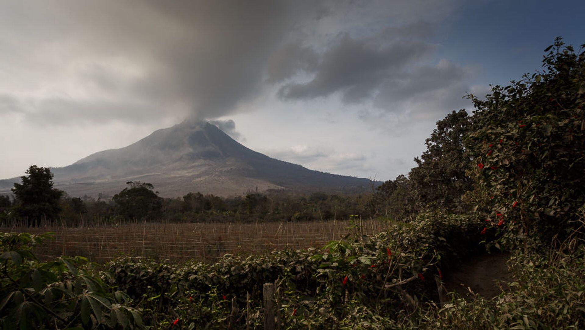 A field in the background of the Mount Sinabung Eruption. Medan, Indonesia, 29 Jan 2014 - Sputnik International, 1920, 28.07.2021