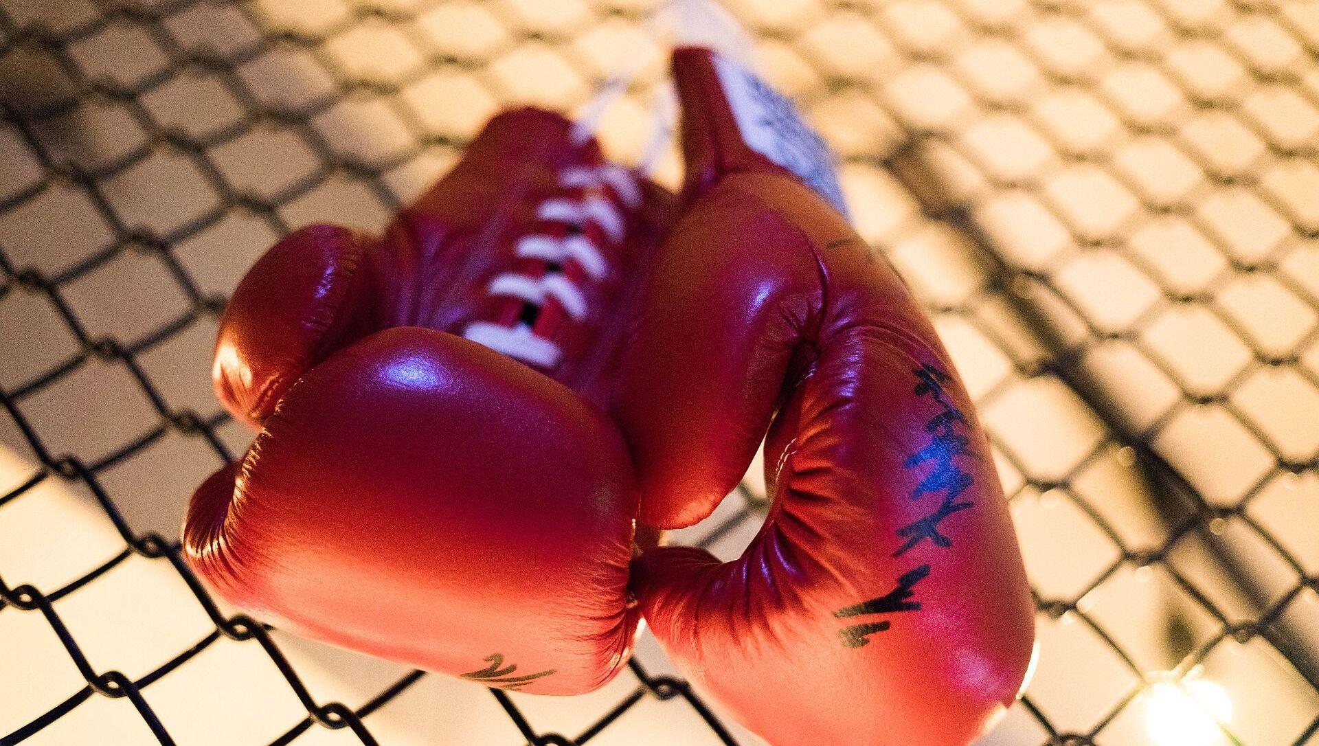 Boxing gloves - Sputnik International, 1920, 29.07.2021