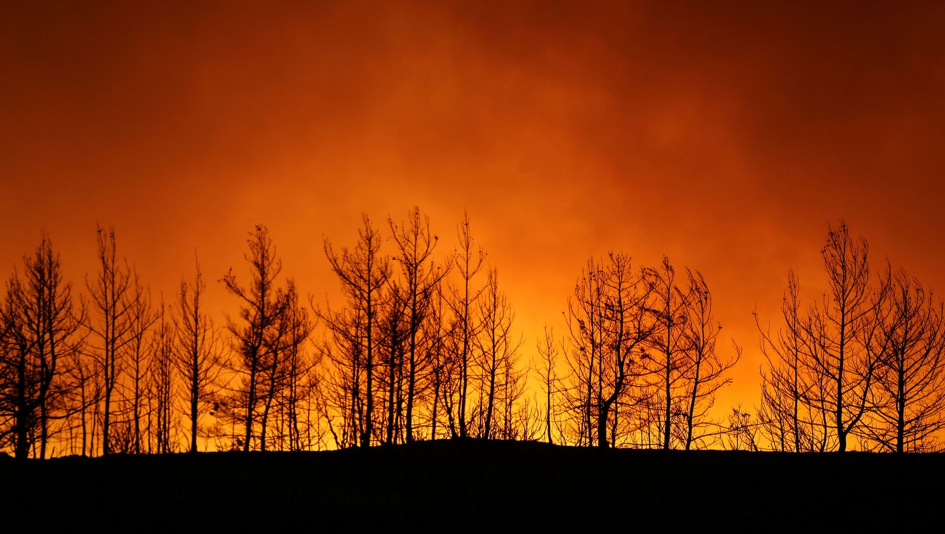 A forest fire burns near the town of Manavgat, east of the resort city of Antalya, Turkey, July 29, 2021. REUTERS/Kaan Soyturk - Sputnik International, 1920, 30.07.2021