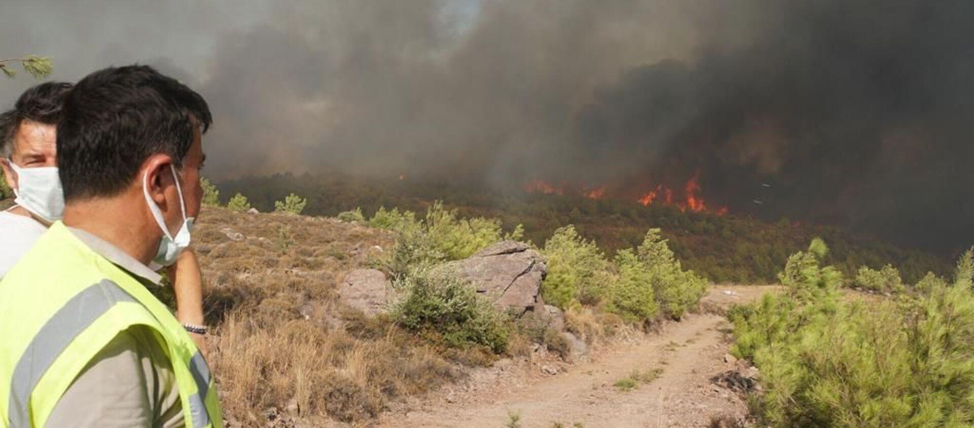 Wildfires raging near the town of Bodrum, Turkey - Sputnik International, 1920, 31.07.2021