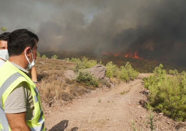 Wildfires raging near the town of Bodrum, Turkey