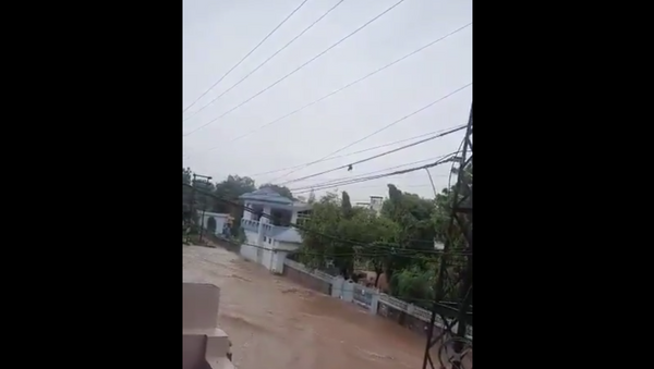 Rajasthan flood - Sputnik International