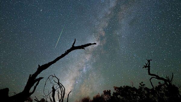 Perseid Meteor Shower Lights Up Night Sky  - Sputnik International