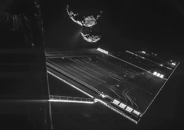 A selfie taken by the Rosetta probe on October 7.