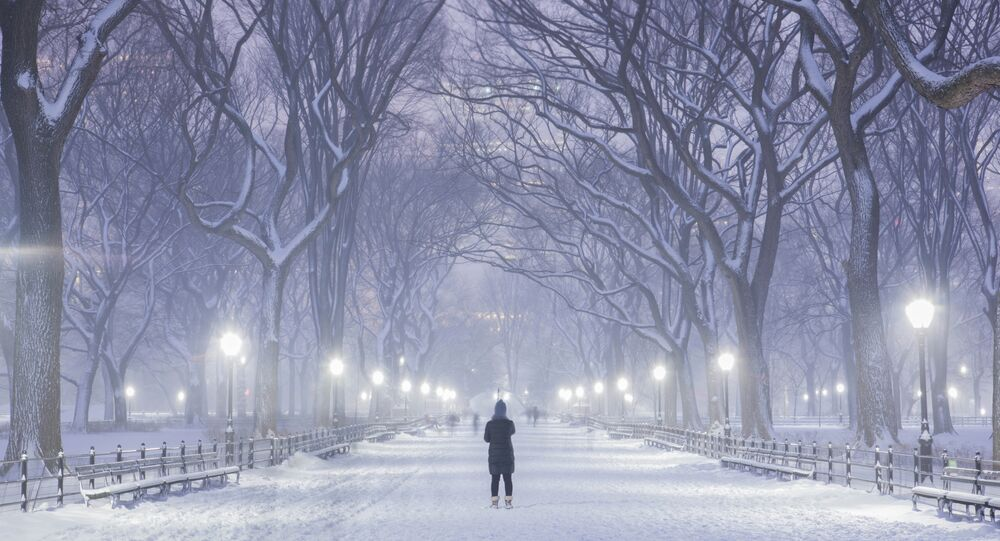 Taken on January 26, 2015, the Blizzard of 2015 in Central Park, New York City, which saw 4 to 6 inches on snow.