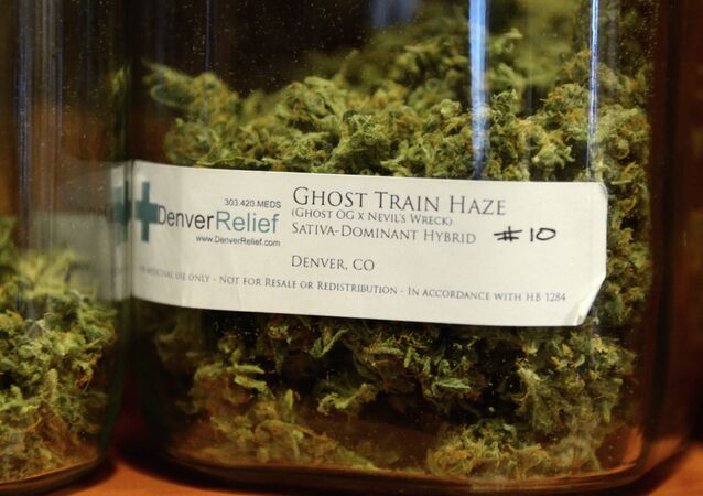 """Denver Relief patients can choose from a range of different marijuana strains with colorful names like """"Ghost Train Haze."""""""