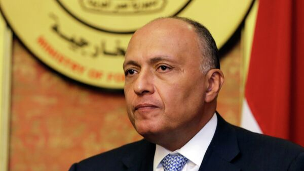 In this Friday, July 18, 2014, file photo, Egyptian Foreign Minister Sameh Shukri speaks during a news conference at the Egyptian Foreign Ministry in Cairo - Sputnik International