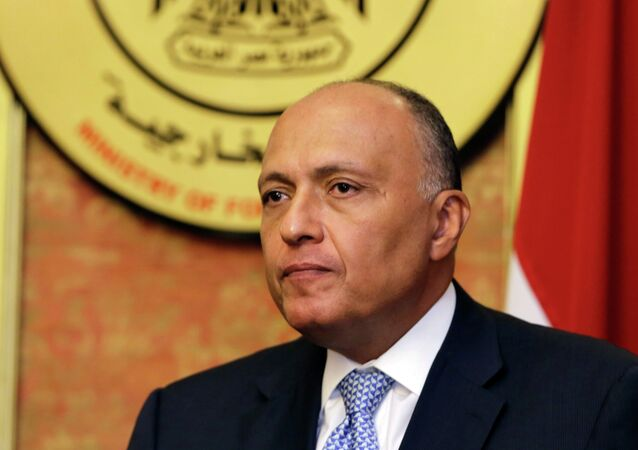 In this Friday, July 18, 2014, file photo, Egyptian Foreign Minister Sameh Shukri speaks during a news conference at the Egyptian Foreign Ministry in Cairo