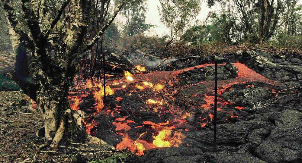 Breakout of lava near the village of Pahoa, Hawaii