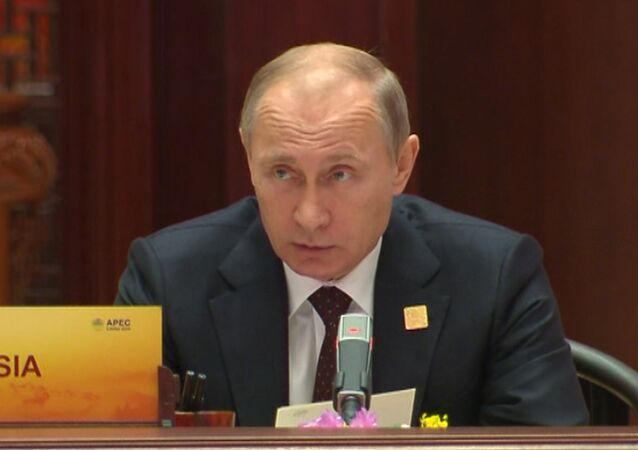 Putin Warns Against Division of APEC Into Separate Competing Groups