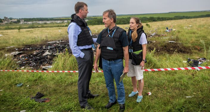 Crash site of Malaysia Airlines flight MH17 near Shaktyorsk