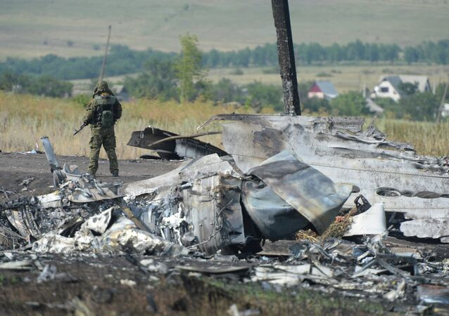 OSCE employees and experts work at Malaysia Airlines Boeing 777 crash site 51 items