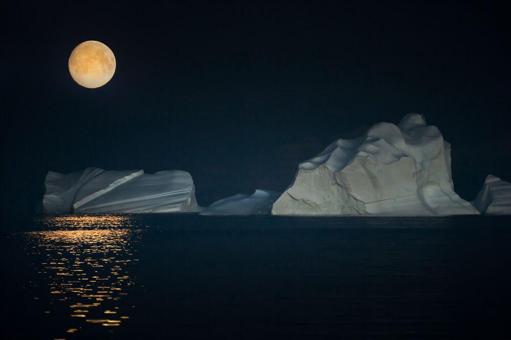 Night at the Arctic