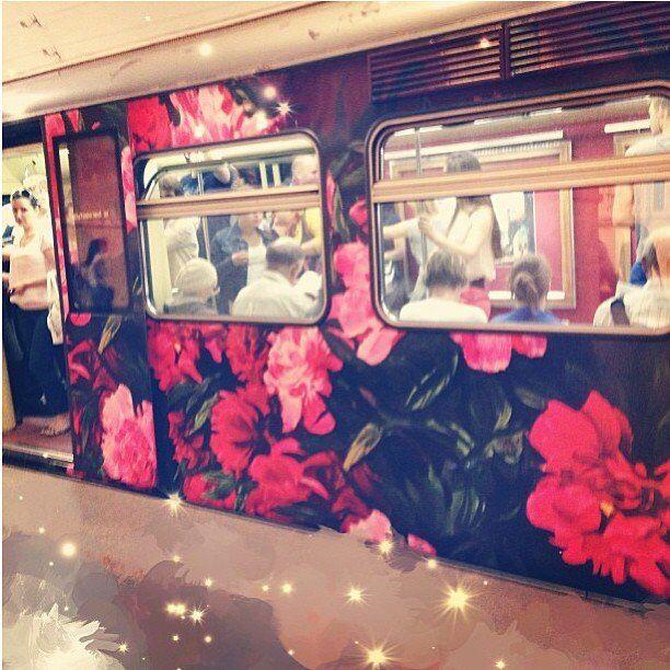The train Watercolor