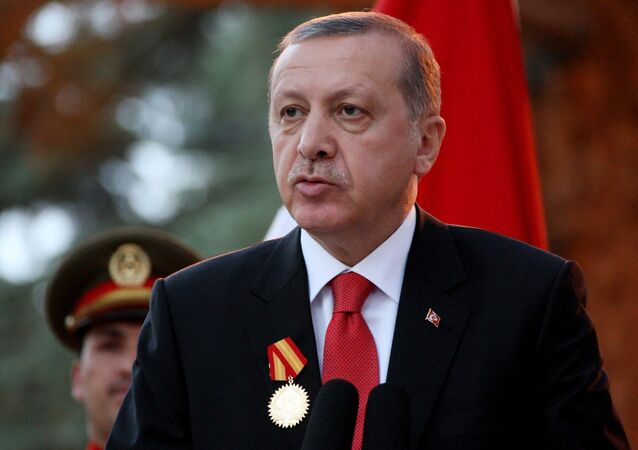 Turkish President Recep Tayyip Erdogan attends a joint press conference