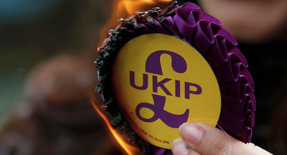 United Kingdom Independence Party (UKIP) rosette