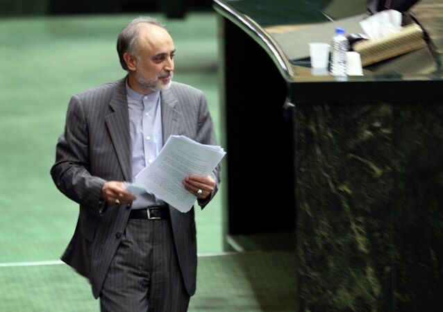 Head of Iran's Atomic Energy Organization, Ali Akbar Salehi