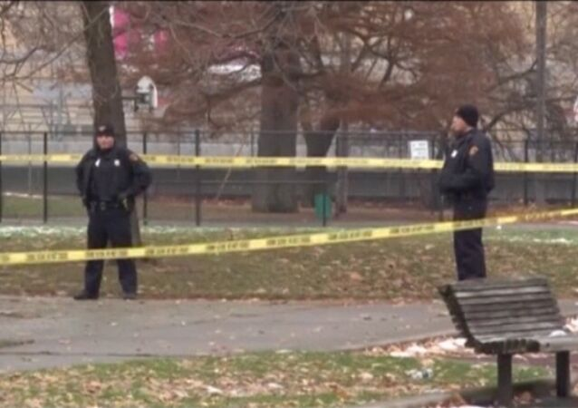 Shooting in the US: Police Officer Kills 12-Year-Old Boy