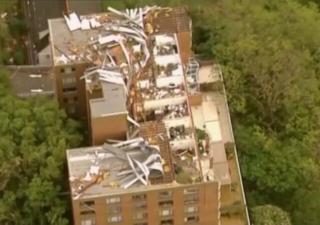 Brisbane Strom: Rooted Out Trees, Ripped-Off Roofs