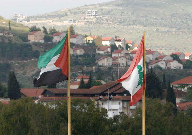 Lebanese, Palestinian flags