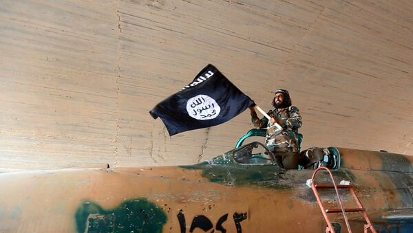 Fighter of the Islamic State group waving their flag from inside a captured government fighter jet following the battle for the Tabqa air base, in Raqqa, Syria - Sputnik International