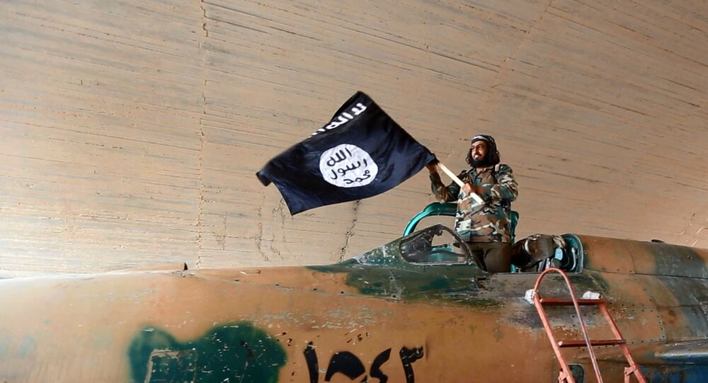 Fighter of the Islamic State group waving their flag from inside a captured government fighter jet following the battle for the Tabqa air base, in Raqqa, Syria