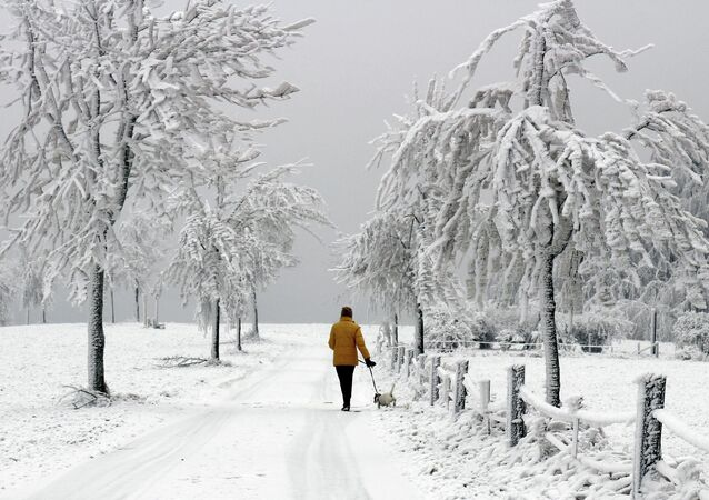A woman walks a dog through the ice and snow covered landscape