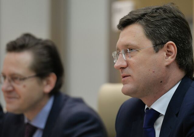 Alexander Novak meets with Pavol Pavlis in Moscow