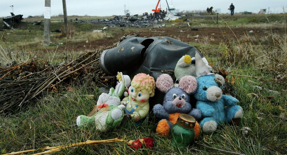 A veteran commercial airlines pilot with over thirty years flight experience says that the wreckage of Malaysia Airlines Flight 17 clearly shows that the plane was shot down by a Ukrainian fighter jet.
