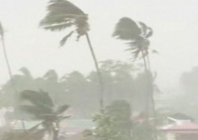 Houses Destroyed, Trees Felled by Typhoon Hagupit in Philippines