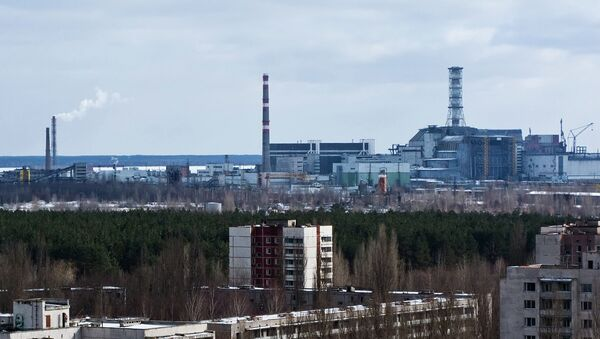 The radioactive area near the Chernobyl nuclear power plant will have an unusual present for its upcoming 30th anniversary in April: the Ukrainian government decided to turn Chernobyl into 'biosphere' nature reserve. - Sputnik International
