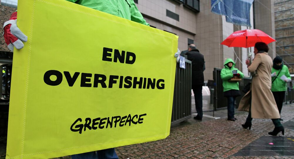 Greenpeace activists stage a protest against overfishing