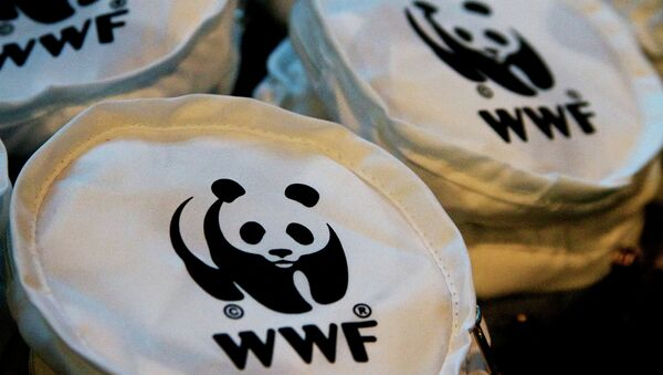 World Wildlife Fund said that Russia made a wise decision to participate in the Green Climate Fund to help less developed countries strive toward low-carbon growth - Sputnik International