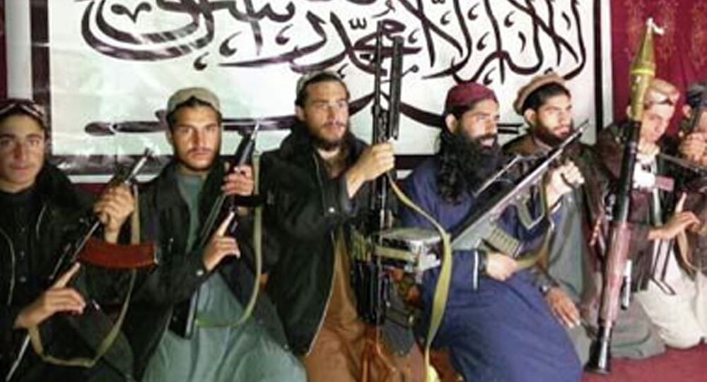 The Taliban fighters