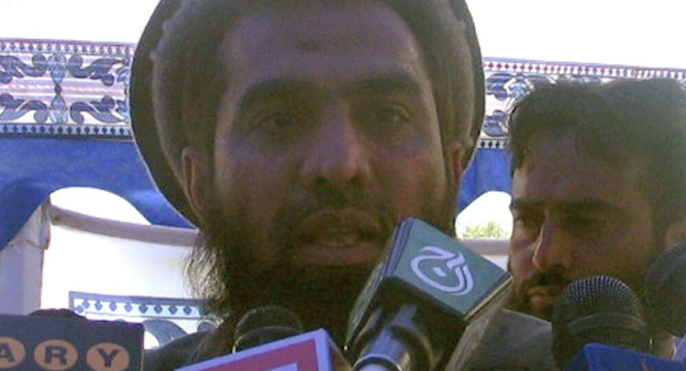 Zaki-ur-Rehman Lakhvi speaks during a rally in this April 21, 2008 file photo.
