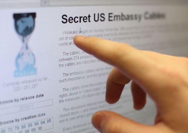 Internet users reading the international media project WikiLeaks