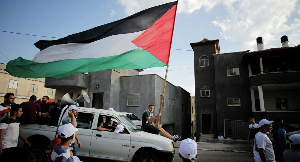 An Israeli Arab carries a Palestinian flag during a march in the northern town of Sakhnin in this October 1, 2014 file photo